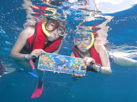 Great Barrier Reef Tour - Great Adventures Cruises, Cairns