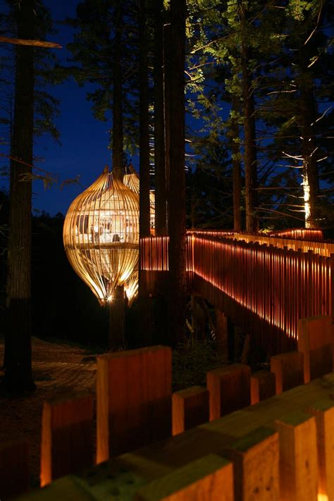 YELLOW TREEHOUSE RESTAURANT IN NEW ZEALAND | PACIFIC
