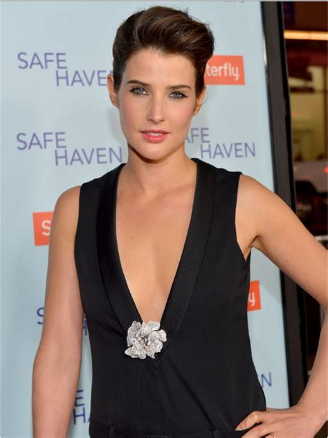 Cobie Smulders – Das How I Met Your Mother-Wiki - Ted